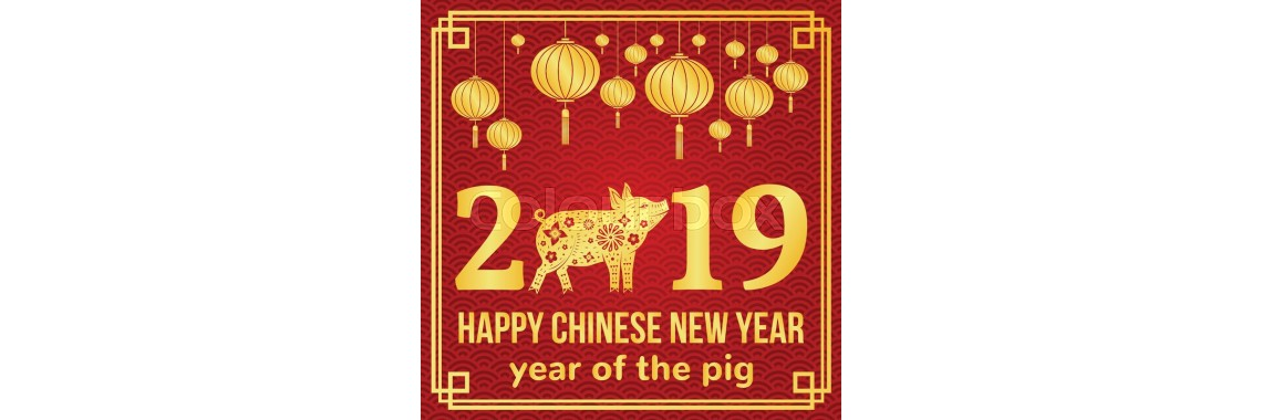 2019 Chinese New Year -the Year of the Pig, Boar