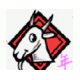 Goat 羊