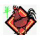Rooster 鸡